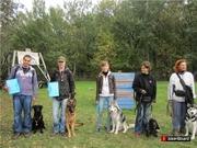 дрессировка собак в северном округе